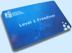 Freediving Certification on Long Island
