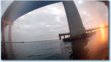 Long Island Diving
