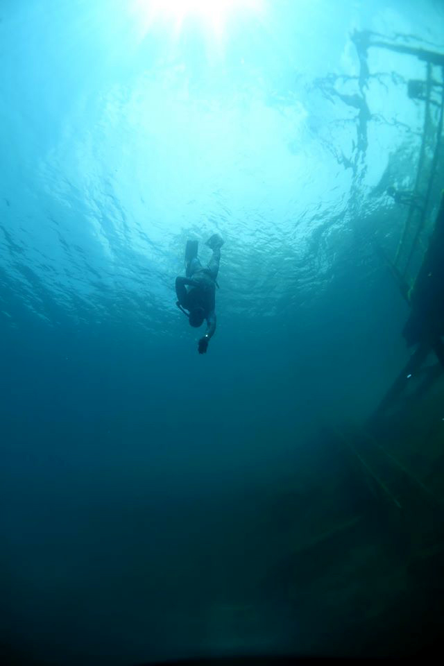 Freediving Certification In New York At School Of Fish Swim And Scuba